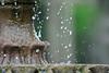 bobbys fountain 800mm