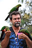 David and King Parrots 1
