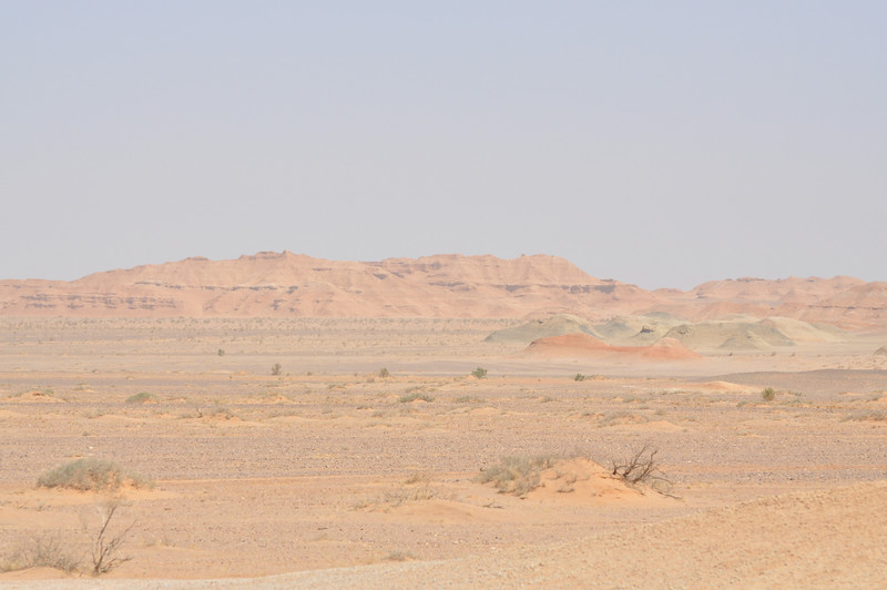 Here's the local stratigraphy of the Xinminpu Group: the low, greenish outcrops (as well as the reddish stuff we're prospecting in) are the lower formation of the Xinminpu Group here; the taller, reddish hills in the distance are the upper formation.  The upper formation has produced copious <i>Auroraceratops</i> (or, at least, cf. <i>Auroraceratops</i>) specimens; the lower unit has prodiced the larger dinosaurs like <i>Suzhousaurus</i>.