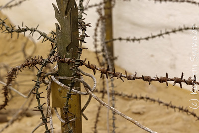 Barbed wire fence by Kerstin