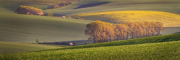 Moravian landscape