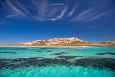 Isola dell'Asinara