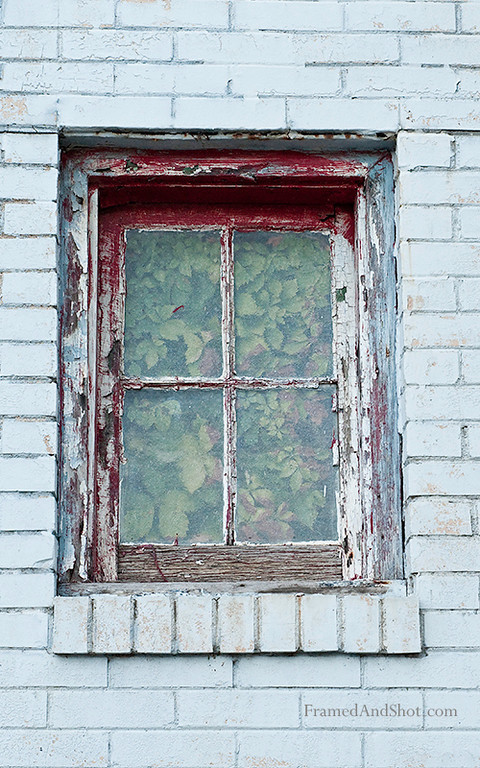 <h4>Window with greenery<br> The nature have taken the inside...