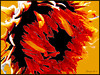 Uitgebloeide zonnebloem / Fotobewerking met Photoshop CS5 Extended