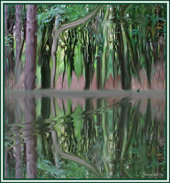 Boslandschap / Fotobewerking met Photoshop CS5 Extended