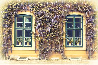 Vídeňské obrázky