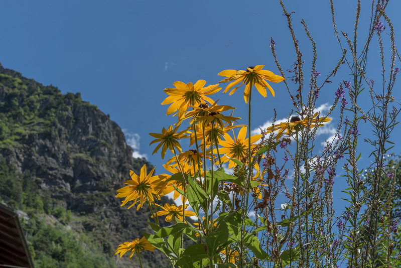 Alpen rondom Aosta Italië