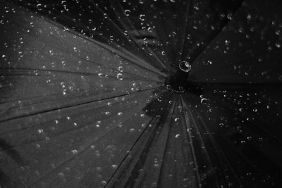 Umbrella with droplets