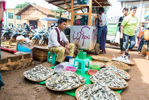 Myanmar_1229