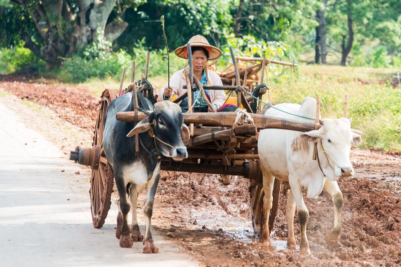 Myanmar_1211