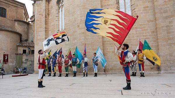 Sbandieratori di Arezzo VII