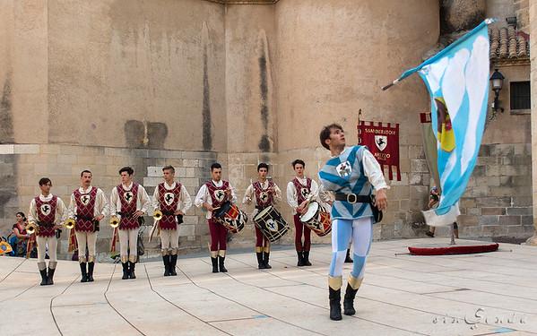Sbandieratori di Arezzo V
