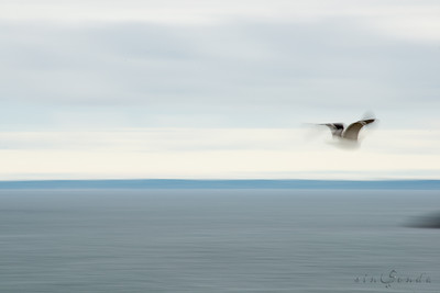 Espíritus del océano. Quiberon I