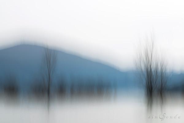 Haiku primordial I. Verso blanco, verso negro, verso azul