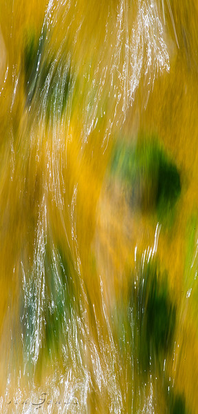 Pitarque Abstracto #11