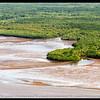 El manglar junto al Estero de Puntarenas.