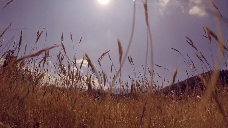 XV Años Damayanti - VideoClip 2