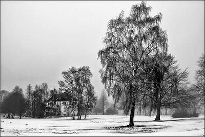 Vintermotiv fra Eremitage sletten.