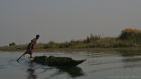Inle Lake, Mjanmar (2008) - Umetnost pogona na človeški motor.