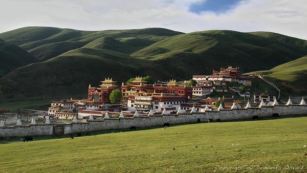 Litang, Kham, Tibet/Kitajska (2010) - Tri leta, tri mesece in tri dni je magična meja meditacije v budističnem samostanu.