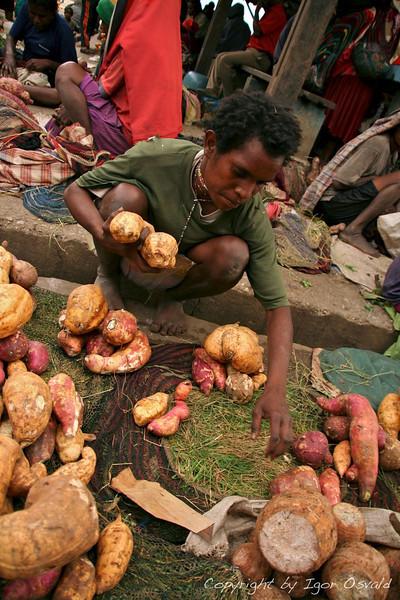 Wamena, Zahodna Papua (Irian Jaya), Indonezija (2007) - Mmm, sladki krompir. Predstavljajte si kostanj velikosti repe. In na veliko zagrizite vanj.