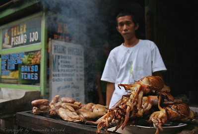 Makassar, Sulawesi, Indonezija (2007) - Lignji velikani in druge dobrote z žara. Dobro prepecite, prosim!