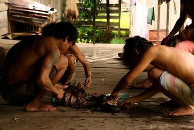 Belaga, Sarawak, Malezija (2006) - Sveže pečena divja svinja. Ravno pravi trenutek sva prišla mimo.