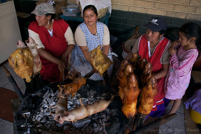 Gualaceo, Ekvador (2009) - Pečeni morski prašički.