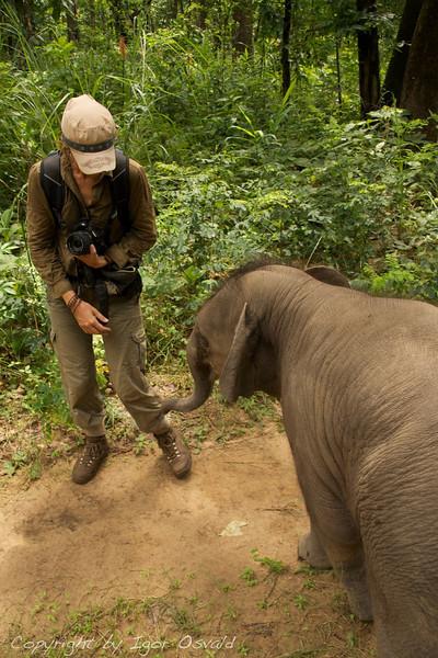 Chitwan, Nepal (2008) - Kako je slon skoraj posesal Dominiko.