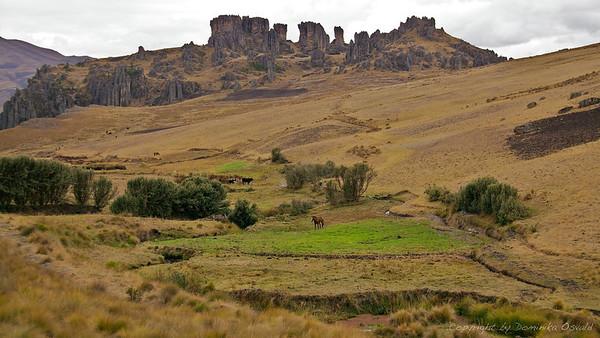 Cumbemayo, Peru (2009)