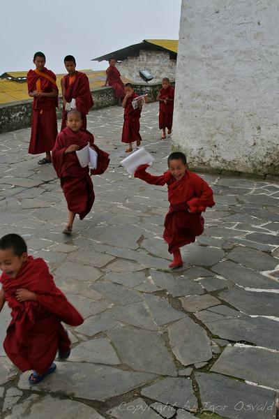 Tawang, Arunachal Pradesh, Indija (2008) - Pouka je konec, yeah!
