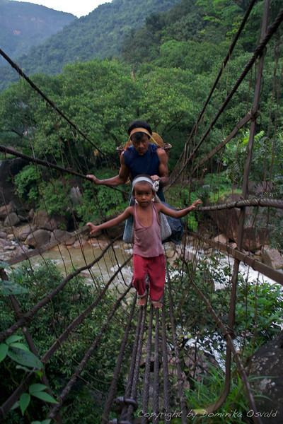 Cherrapunjee, Meghalaya, Indija (2008) - V pajkovi mreži.