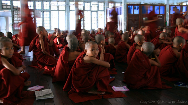 Yangon, Mjanmar (2008) - Trenutek v otroštvu, ko male budiste starši začasno predajo objemu samostana. Laski so tukaj odveč.