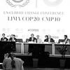 COP20. Pág 43 Libro