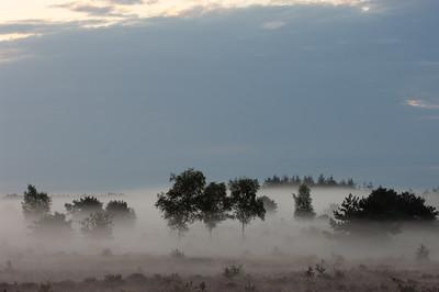 2007 08 29 Hei nevel tijdens zonsopkomst  006