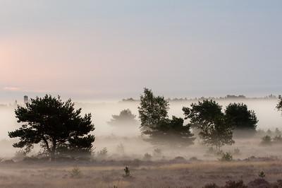 2007 08 29 Hei nevel tijdens zonsopkomst  016