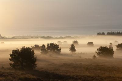 2007 08 29 Hei nevel tijdens zonsopkomst  054