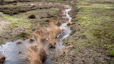 01-03-2020 Heidebeek HV Hoogte foto 085