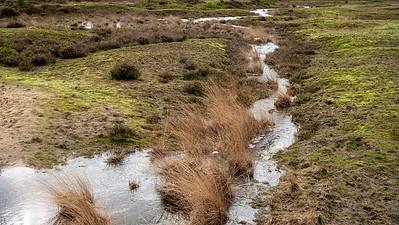 01-03-2020 Heidebeek HV Hoogte foto 081