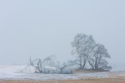 2007 12 21 Zandverstuiving hv winter rijp 025