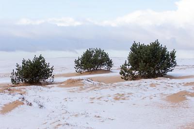 2008 03 19 Zandverstuiving hogeveluwe sneeuw  010