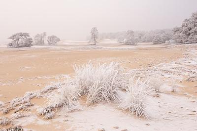 2007 12 21 Zandverstuiving hv winter rijp 041