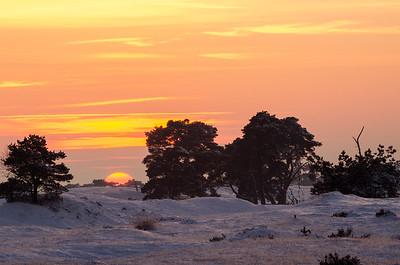 2012 12 08  Hei zonsondergang in de sneeuw  019