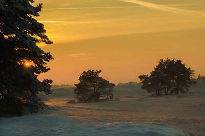 2012 12 08  Hei zonsondergang in de sneeuw  001