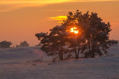2012 12 08  Hei zonsondergang in de sneeuw  006