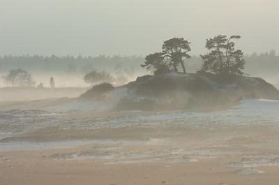 2007 12 23 Kootwijkerzand nevel 020