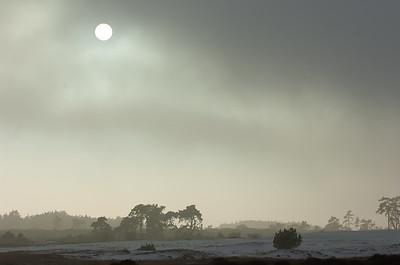 2007 12 19 hei hv winter rijp 008