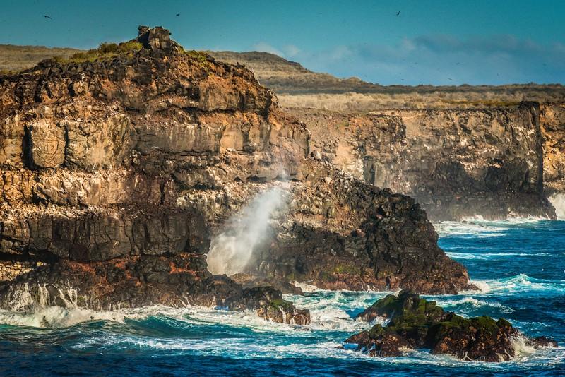 Punta Suarez