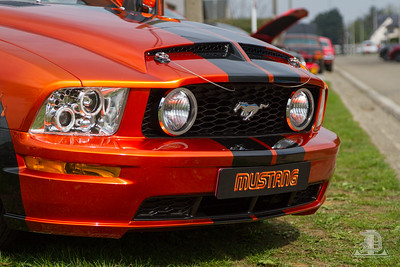 Mustang event
