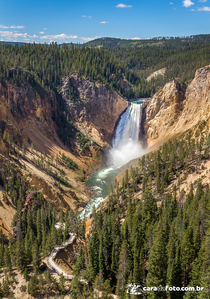 Yellowstone Park – Amarelo MESMO
